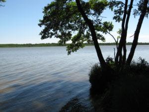 Jezioro Sarbsko